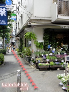 120727_root_simokitazawa06_DSC05226