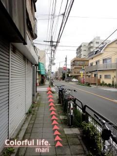 120727_root_simokitazawa13_DSC05239
