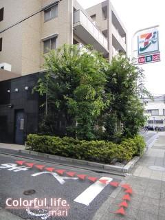 120727_root_simokitazawa15_DSC05323
