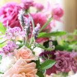 春のベランダ花1