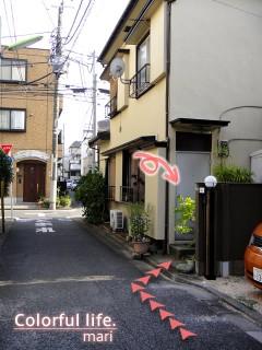 120725_root_shibu8_DSC05304