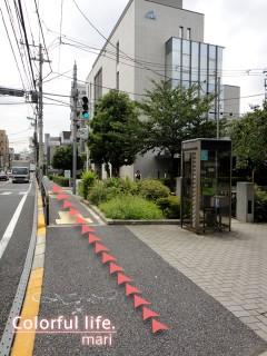 120727_root_simokitazawa10_DSC05233