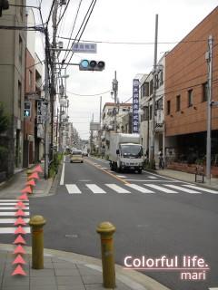 120727_root_simokitazawa14_DSC05241
