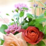 春のベランダ花2