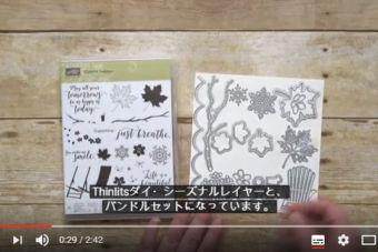 【製品紹介 動画】カラーセオリー・スイート
