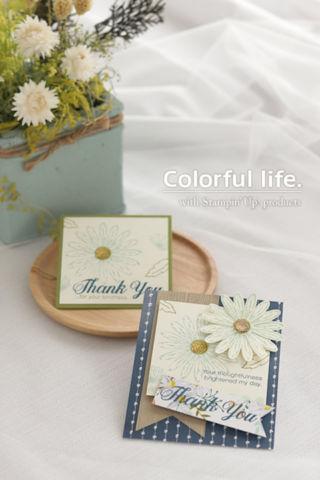デイジー・ディライトのカード2種(縦)