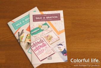 【PDFカタログ掲載】セラブレーションのプレゼントアイテムが4つ増えます