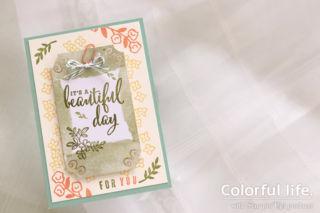 ビタミンカラーのお花カード(横-ラブ・ホワット・ユー・ドゥ)