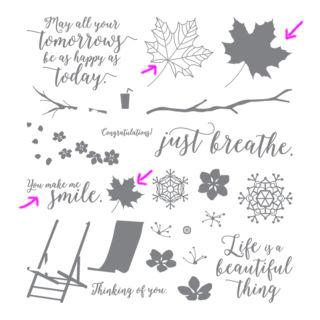 秋に色づく葉っぱのカード(カラフルシーズンから使ったもの)