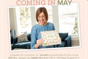 【5/15~数量限定 】福袋的なキット「ペーパーパンプキン」の特別版が日本でも♪