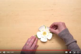 【製品説明・使い方動画】マグノリア・メモリー・ダイを使ったペーパーフラワーの作り方
