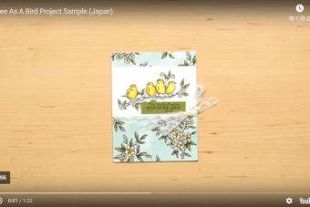 【公式作品 作り方動画】かわいい小鳥ちゃん「バードバラード」を使ったカード