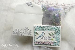 小鳥ちゃんのレースカード(横:フリー・アズ・ア・バード)