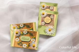 押し花柄のホワイトデイジーカード(2種)