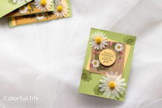 ダブルフラワーデイジーの押し花柄カード(横:デイジーレーン)