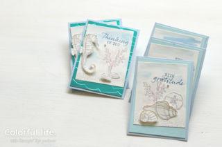 シーサイド・ノーションのカード2種