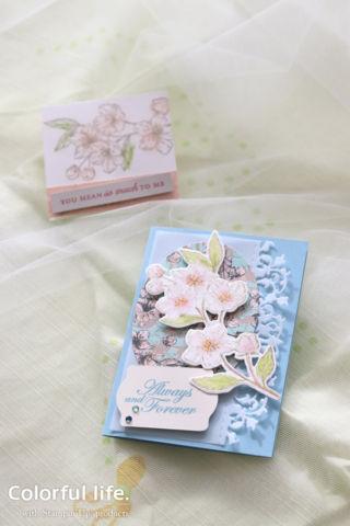 桜のカードセット(縦:フォーエバー・ブロッサム)