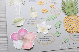 タイムレス・トロピカル(色塗りサンプル)