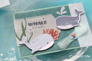クジラちゃんのパンチで、瑞々しい海のカード(アップ:ホエールダン)
