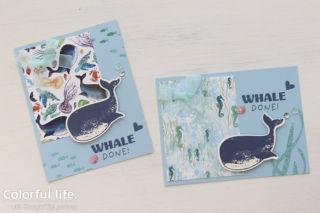海遊びのミニカード(クジラ:ホエールダン)