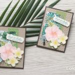 【ダイカット・色塗り】夏のお花を楽しむ、ハイビスカスとプルメリアのカード