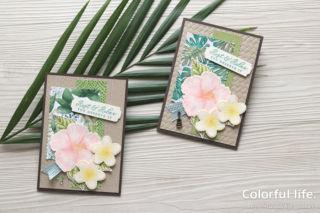 夏のお花を楽しむ、ハイビスカスとプルメリアのカード(横:タイムレス・トロピカル)