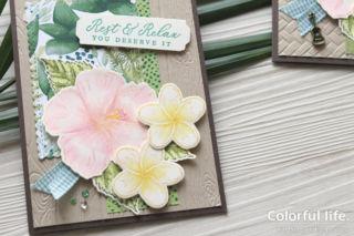 夏のお花を楽しむ、ハイビスカスとプルメリアのカード(アップ:タイムレス・トロピカル)