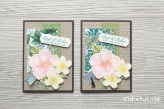 夏のお花を楽しむ、ハイビスカスとプルメリアのカード(柄違い:タイムレス・トロピカル)