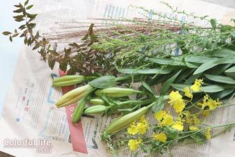 季節のお花は色選びのお手本/お花の定期購入