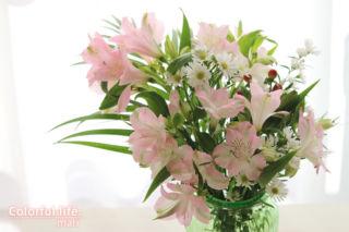 お花の定期購入(11月1回目-2)