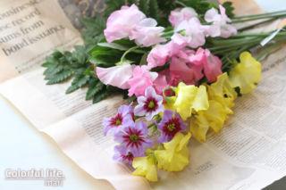 定期購入のお花(2月1回目)