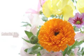 定期購入のお花4(2月1回目)
