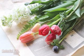 定期購入のお花(2月2回目)