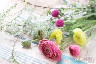 お花の定期購入/ピュアフラワー(3月1回目)