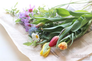 お花の定期購入/ピュアフラワー(3月2回目)