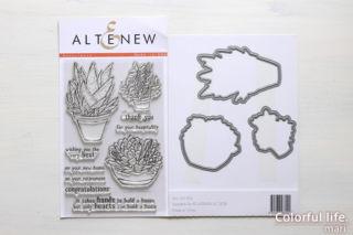 Succulents/Altenew