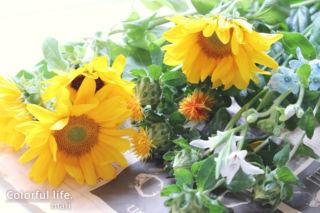 お花の定期購入/ピュアフラワー(5月1回目1)