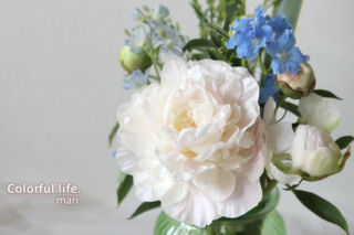 お花の定期購入/ピュアフラワー(5月2回目2)