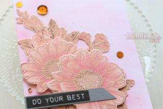 公式ブログ掲載のデザインをまねて♪ピンクのデージーカード(アップ:Spring Daisy/Altenew)